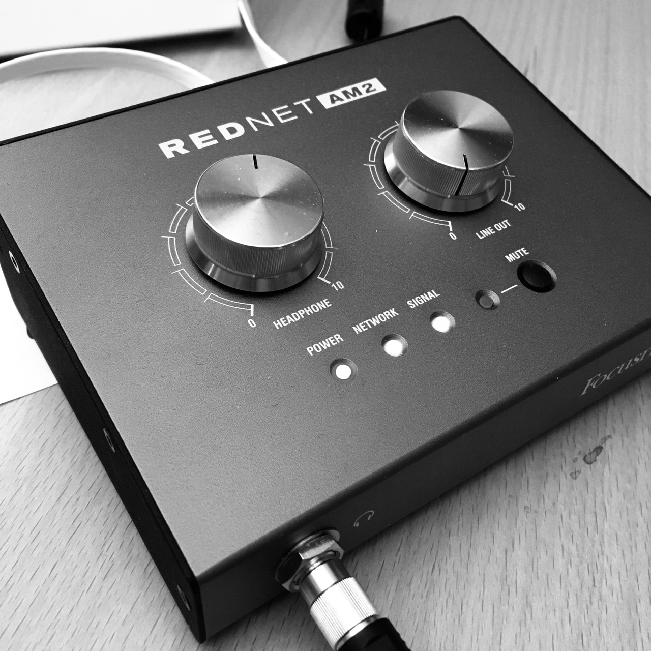 Focusrite RedNet AM2 audio interface